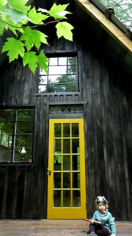 Camp Grits Little Black Cabin. We are still here! - Cosby - Bed & Breakfast