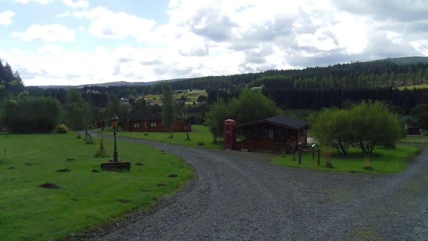 Cosy Kielder lodge -lots to do,amazing night skies - Kielder - Бунгало