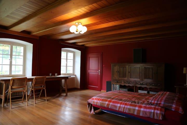 Huge Red Room - Gänsbrunnen - Huis