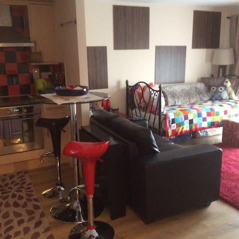 Lovely little flat Mi Casa Su Casa - Ipswich - Pis