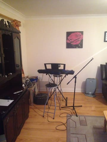 Beautiful, Class A, Breakfast inc. - Athboy - Appartement