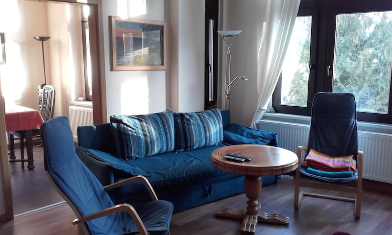 Cosy Apartment in Downtown Greiz - Greiz - 公寓