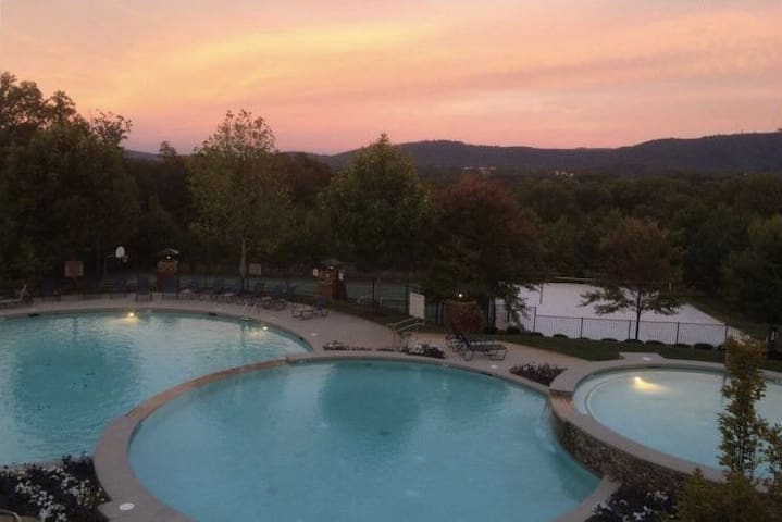 Mtn view room with Bath near UVA - Charlottesville  - Leilighet