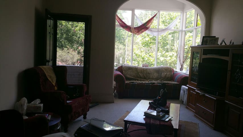 Location! Location! Location .... North Shore!! - North Sydney - Daire