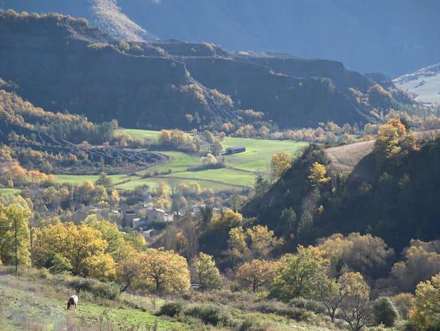 Les Terrasses de Haute Provence - La Robine-sur-Galabre - Casa