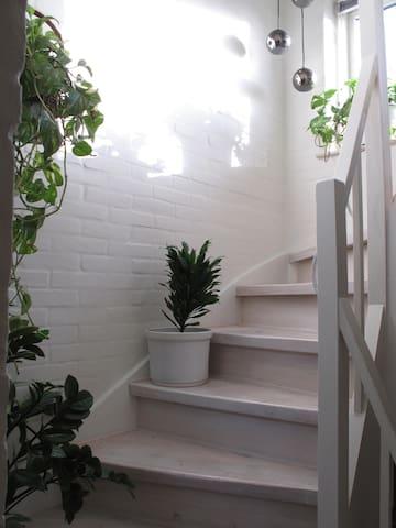 Dream place - Hvidovre - Casa