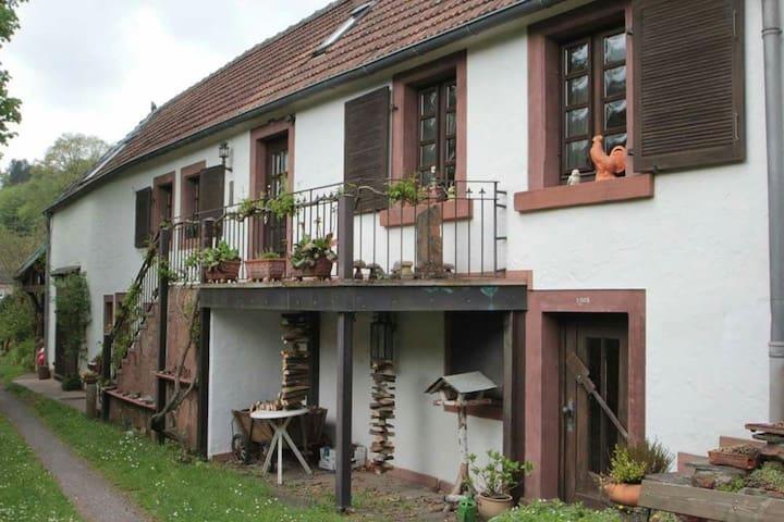 Das ideale Ferienhaus für Wanderer! - Lemberg - 一軒家