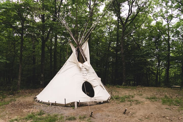 Magic Forest Farm Garden Tipi - Coeymans Hollow - Типи