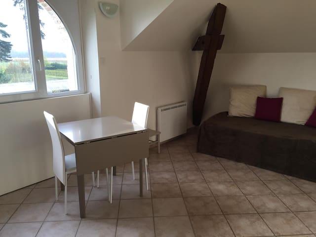 Beau studio meublé de standing - Saint-Denis-en-Val - Daire