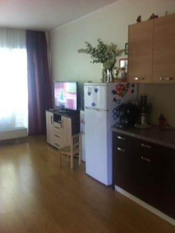 Уютная комната в большой новой квартире RU, EN, ES - Rīga - Apartment