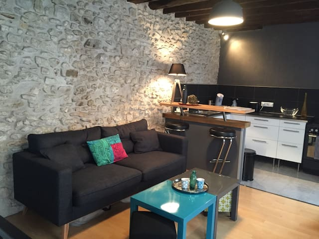 Lovely Cosy&Chic Duplex in Fonty - Fontainebleau - Apartament