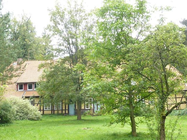 Zimmer in Göhrde /Tor zum Wendland - Göhrde - Talo