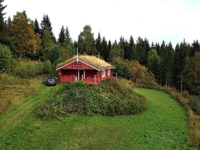 Hytte med utsikt fra år 1901. - Biri - Mökki