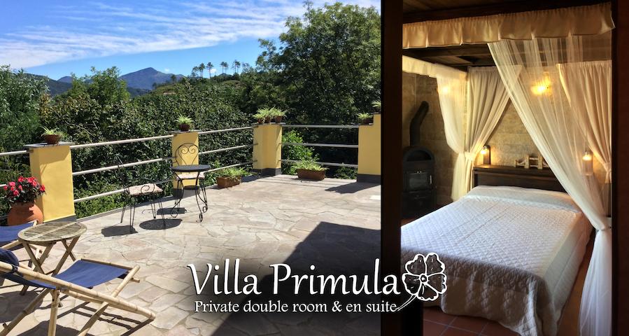 Villa Primula - Private double room & en suite - Leivi - 獨棟
