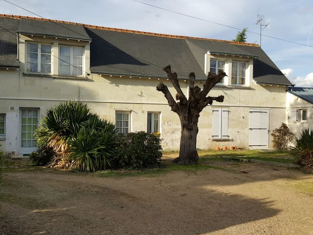 Gite FLORA , pour professionels et vacanciers - Chouzé-sur-Loire - Leilighet