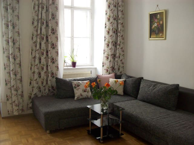 Aparment in the heart of Vienna - Vienne - Appartement en résidence