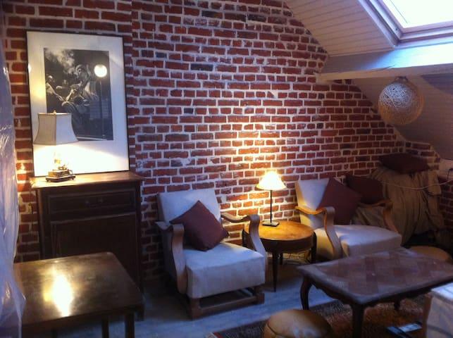 Studio Sous Les Toits Vue Basilique - Albert - 公寓