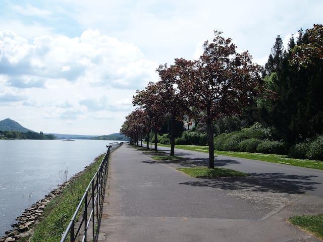 Haus am Rhein mit Garten & Dachterrasse - Bonn