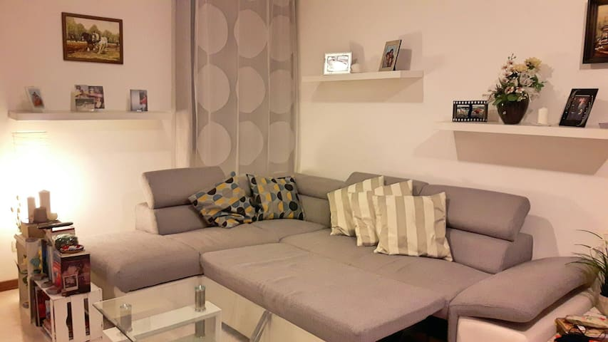 Comfortable couch bed in the living room - Piombino Dese - Departamento