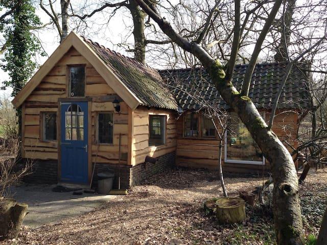 Elfenhuisje midden in het bos - Uffelte - Hus