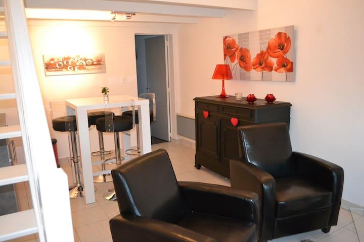 appartement coquet - Saint-Nicolas-de-Redon - Departamento