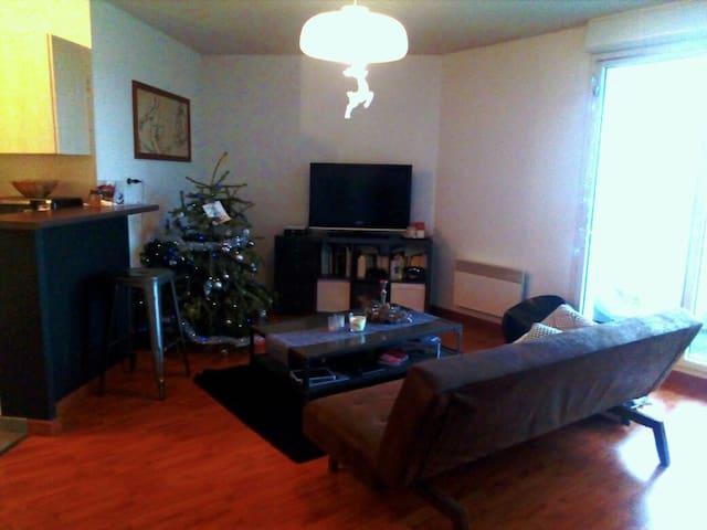 Appartement T2  dans résidence calme avec piscine - Frouzins - Appartement