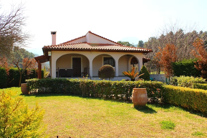 Beautiful House in Amazing location (H1) ~ - Prokopi