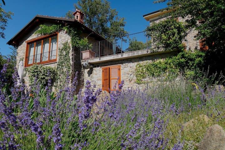 Charming stone house in the woods (AltoMonferrato) - Ponzone - Rumah
