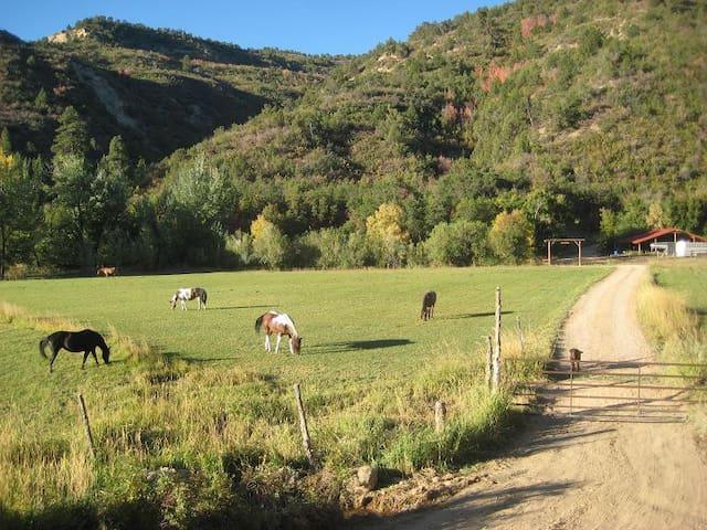 Unique Cowboy Cabin/Bunkhouse @ HappyOurs Ranch - Glendale - Houten huisje