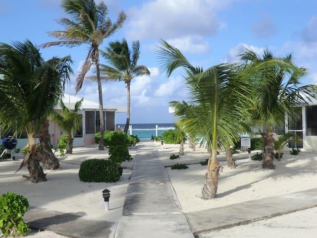 Grand Cayman Sea Lodge Oceanfront on North Side - North Side - Selveierleilighet
