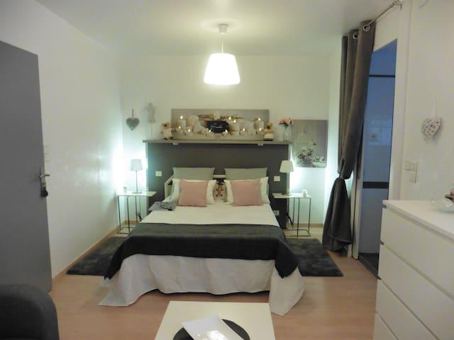 Bed and Breakfast en-suite dans pavillon de charme - Montrabé - Hus