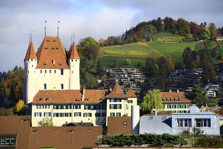 Central double room & amazing view - Thun