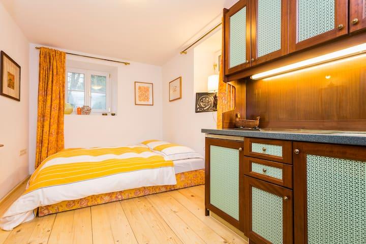 VILLA1902  japangardn quiet+kitchen - Salzburgo - Villa