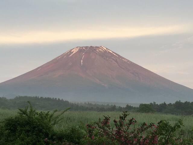 Mt.Fuji Guest House RoomA - Fujikawaguchiko-machi