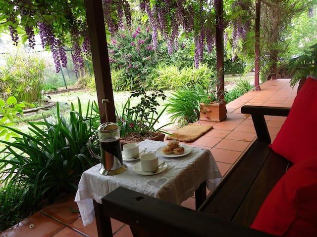 Wisteria B&B Cottage, Bellingen NSW - Bellingen - Bed & Breakfast