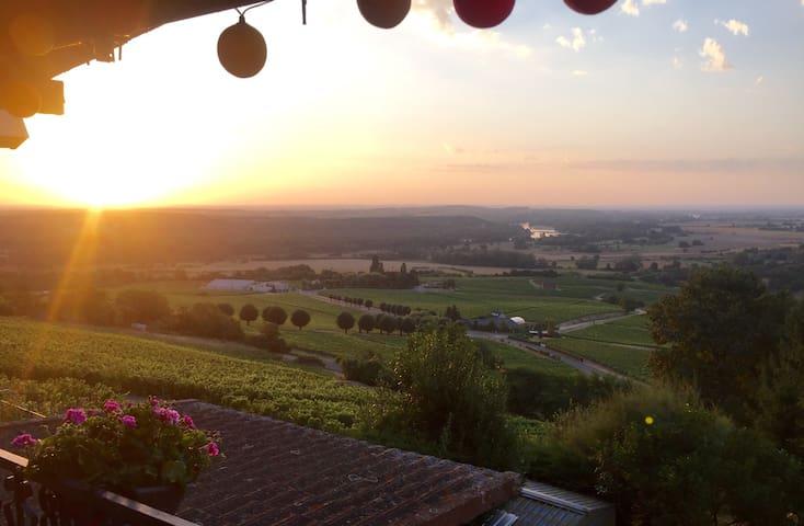 Vue panoramic sur le vignoble - Sancerre - Ev