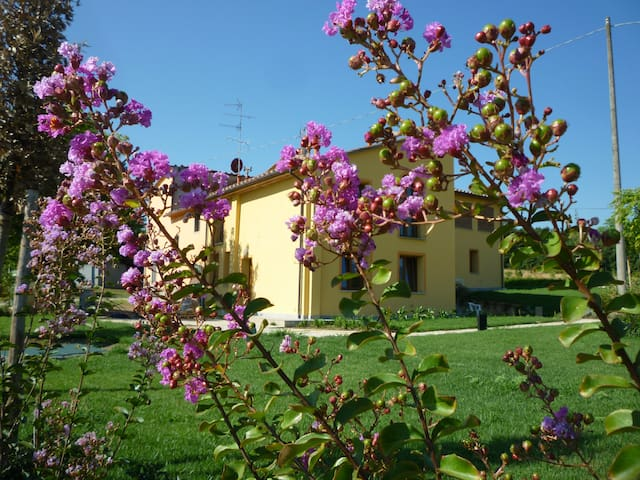 1 of 5 apt in farm house in Toscany countryside - Casalguidi, Serravalle Pistoiese