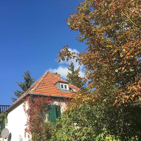 Wunderschönes Haus nahe am Müggelse - Berlim - Casa
