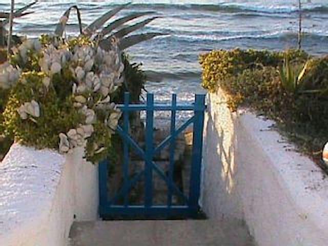 Villa con giardino sul mare - Marritza - Villa