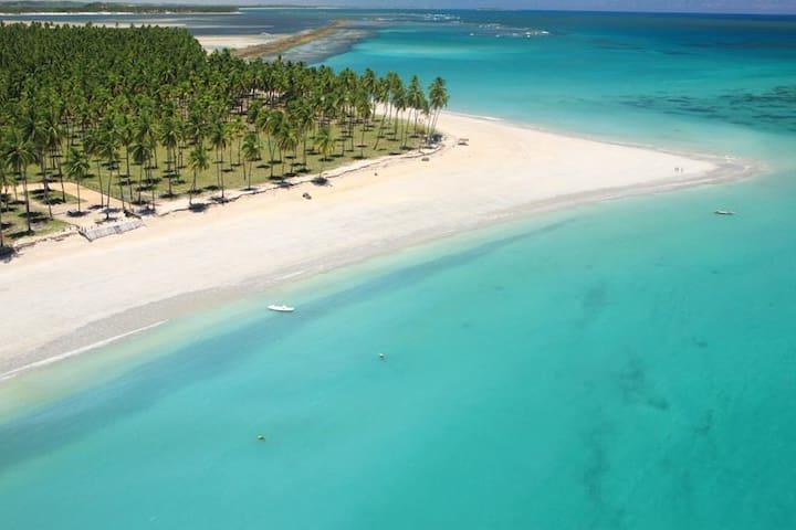 Carneiros Beach Resort - Tamandaré - Apartmen