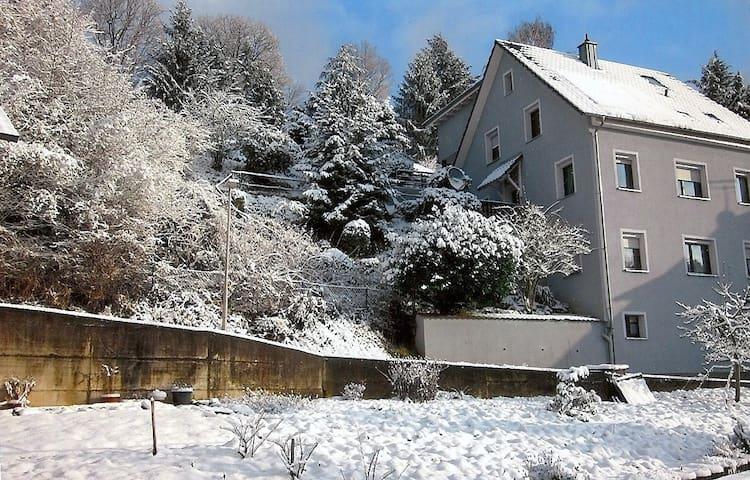 2 Zimmer Apartment Am Altenberg  - Lahr - Maison