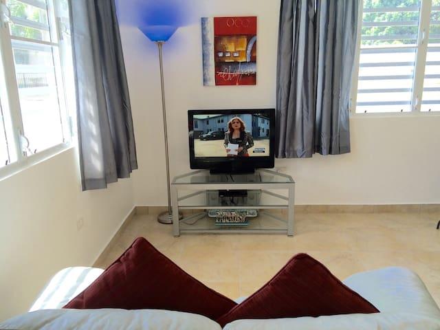Newly Remodeled, 15 Minutes S. Juan - Caguas - Lägenhet