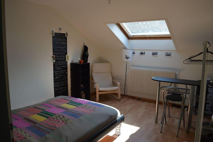 Jolie chambre lumineuse entre nature et culture - La Chaux-de-Fonds - Appartement