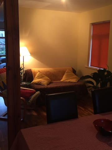 Lovely spacious studio apartment - Wicklow - Appartement