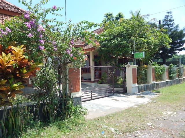 d'Katu Guest House - Sidorejo - Talo
