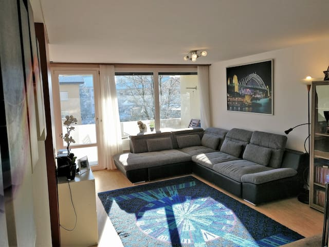 Nice apartment in the heart of CH - Sursee - Apartament