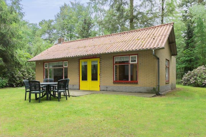 6-persoons bungalows (C) in een bosrijke omgeving - Lage Mierde - Bungalow