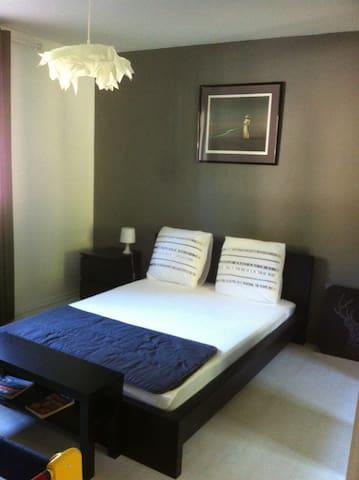 chambre à 30mn du Vieux Lyon et du centre Ville - Couzon-au-Mont-d'Or - Appartement
