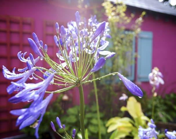 Lakeland idyll, design jewel - b&w - Watermillock - Huis