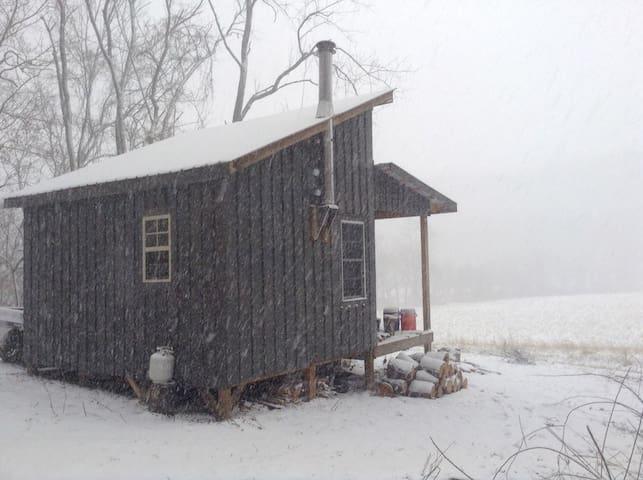 Secluded Cabin #2 Artist/Writer/Spiritual Retreat - Wellsburg